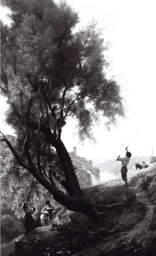 Франсуа-Луи Франсэ. Сбор оливок в Тиволи